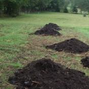 Univerzální hnojiva a substráty