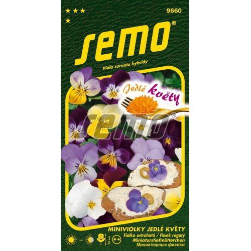 Miniviolky jedlé květy
