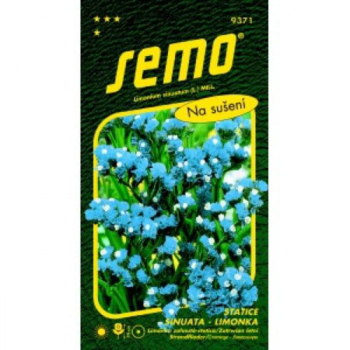 Statice sinuata limonka BLUE