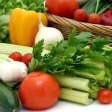Řapíkatý celer a jeho pěstování